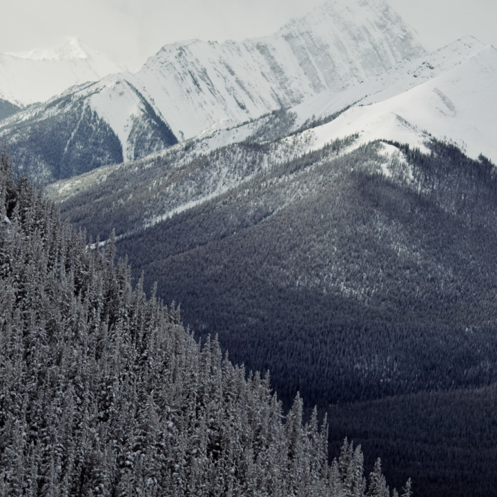 CANADIAN ROCKY MOUNTAINS : BANFF : FRIENDS